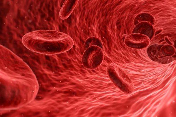 claves contra el colesterol colesterol 10 claves contra el colesterol 10 claves contra el colesterol 600x400 instituto europeo Instituto Europeo de Salud 10 claves contra el colesterol 600x400