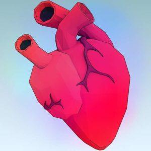 valvula aórtica válvula Válvula aórtica percutánea heart 1164567 640 1 300x300