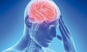 Ictus cerebral ictus Ictus: infarto y derrame cerebral ictus 1 300x178