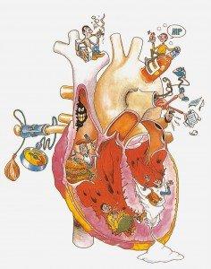 Cuidando el corazón corazón Cuidando el corazón Cuidando el coraz  n instituto europeo Instituto Europeo de Salud Cuidando el coraz C3 B3n