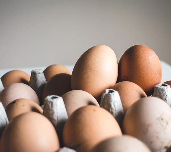Adiós al mito de que el huevo es igual al colesterol mitodelhuevo 600x533 instituto europeo CN – Instituto Europeo de Salud mitodelhuevo 600x533