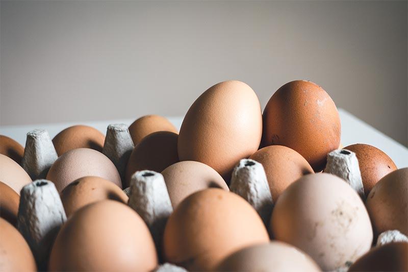 Adiós al mito de que el huevo es igual al colesterol mitodelhuevo  Expert in Healthy Business Management mitodelhuevo