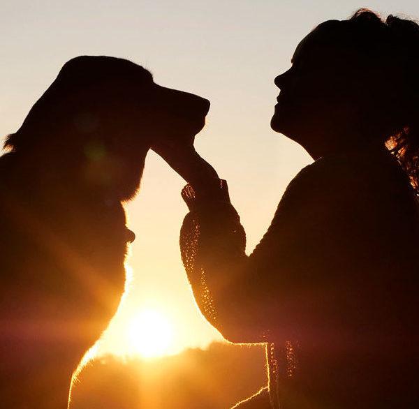 Beneficios de tener mascota para la salud beneficios Beneficios de tener mascota para la salud 11dog 4494554 1920 e1589791940875 600x586 instituto europeo CN – Instituto Europeo de Salud 11dog 4494554 1920 e1589791940875 600x586