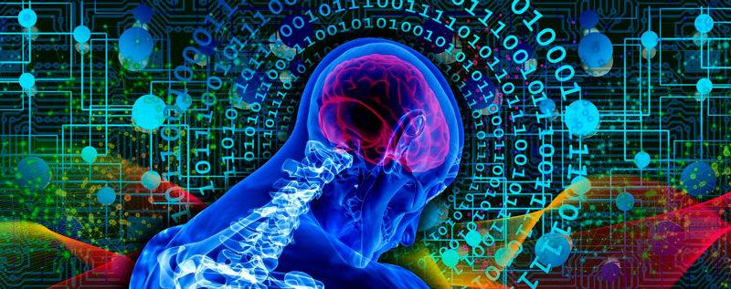 Cerebro: curiosidades y secretos cerebro Cerebro: curiosidades y secretos 1111artificial intelligence 5291510 1920 800x317 Master in Expertise in Body and Psychosocial Damage 1111artificial intelligence 5291510 1920 800x317