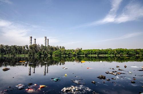 La necesidad de la educación ambiental - medio ambiente
